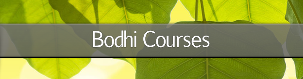 Bodhi Courses